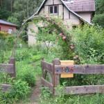 Ökologisch und vegetarisch leben - Tipps und Austausch